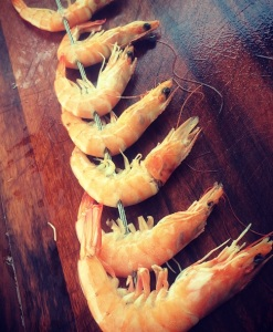 peixe camara espeto2